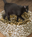 Leopard Print Cat Cosy Bed by Danish Design