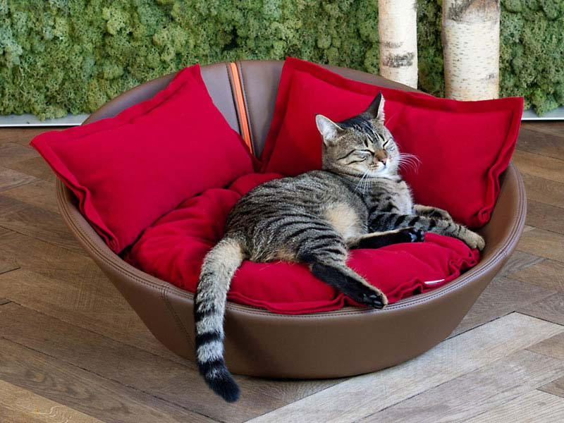 Luxury Leather Mila Cat Bed Brown Red