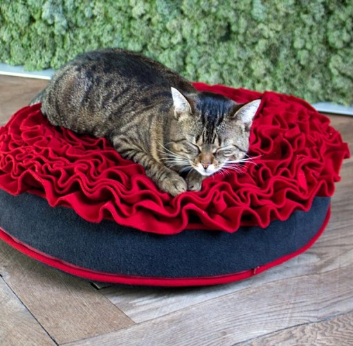 Luxury Lounge Rose Cat Bed REd 3