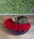Luxury Lounge Rose Cat Bed Red