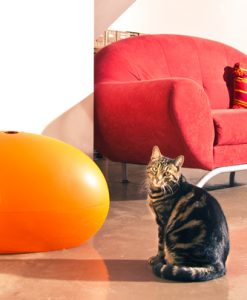 Luxury Orange Poopoopeedo Cat Litter Box