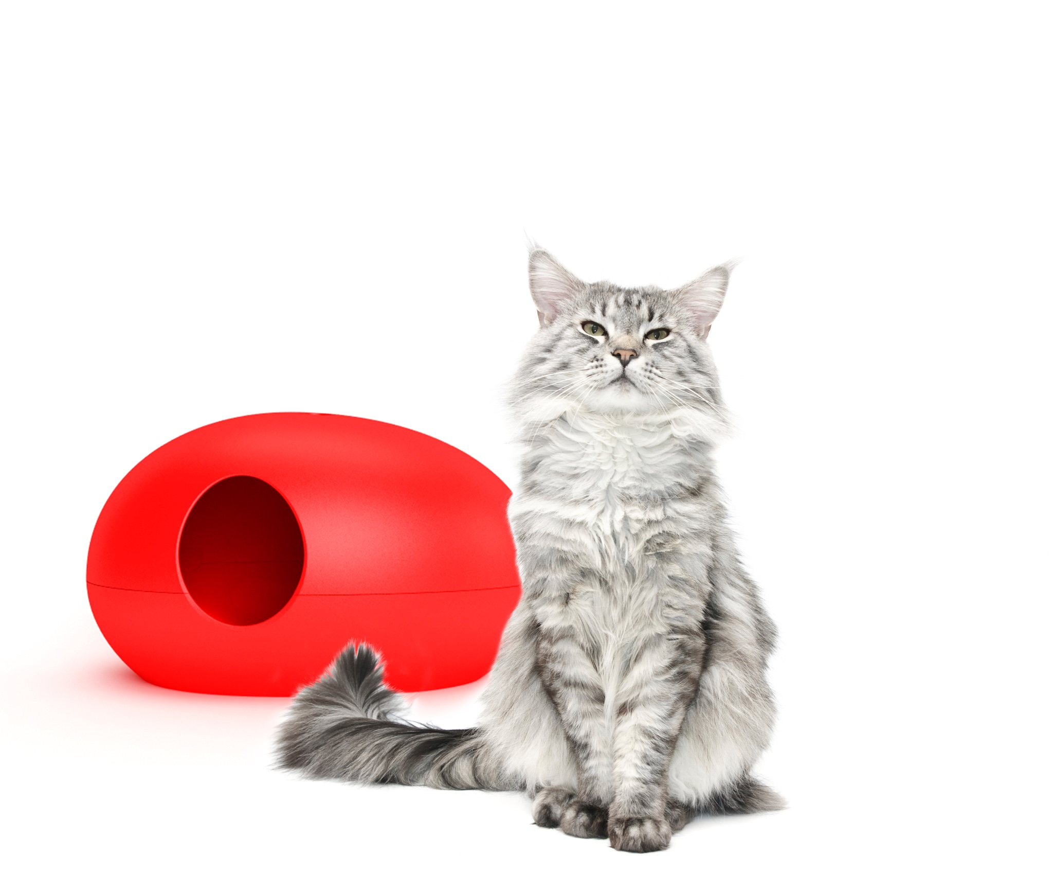 Luxury Red Poopoopeedo Cat Litter Box