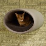 Luxury Rondo Wall Felt Cat Bed Grey