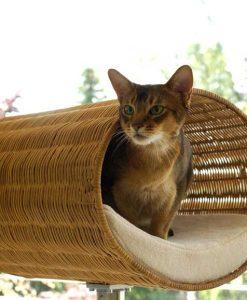 Luxury Rondo Wicker Cat Stand Cream 2