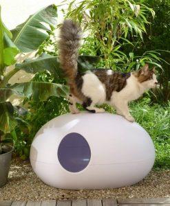 Luxury White Poopoopeedo Cat Litter Box