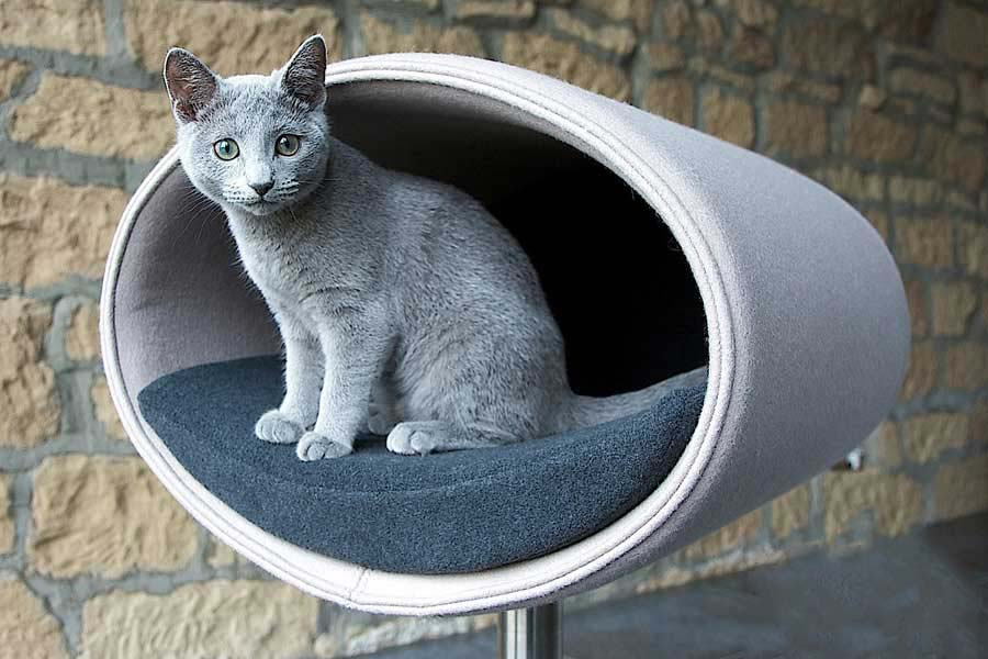 Chelsea cats luxury cat beds collars and accessories for Designer cat beds uk