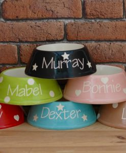 Personalised Slanted Cat Bowls Hearts, Stars and dots at Chelsea Cats