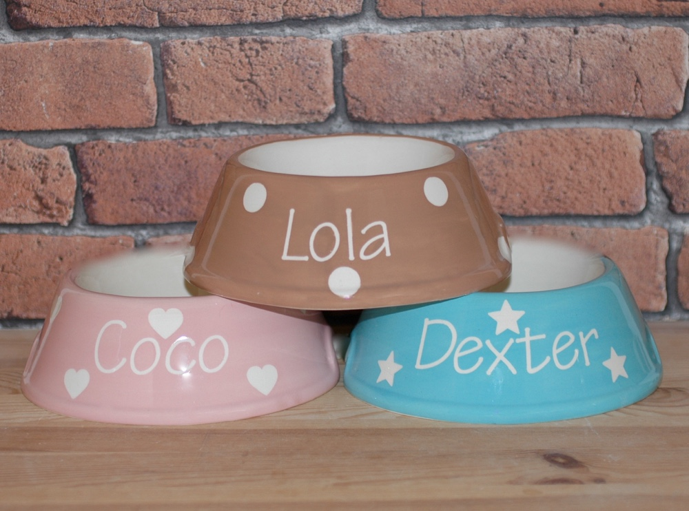 Personalised Ceramic Slanted Solids Cat Bowls