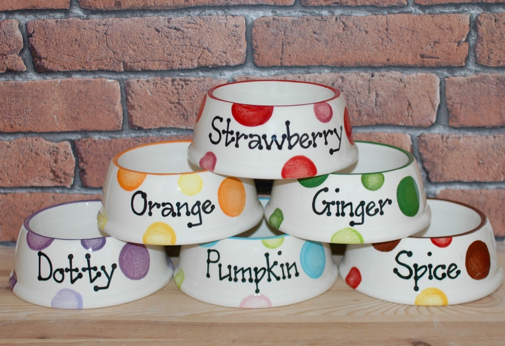 Personalised Ceramic Slanted Spotty Cat Bowls