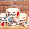 Personalised Ceramic Spotty Cat Bowls