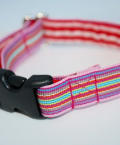 Bella Designer Cat Collar by Scrufts