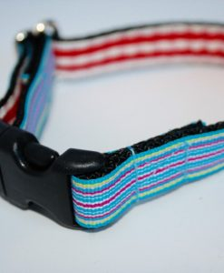 Jack Designer Cat Collar by Scrufts