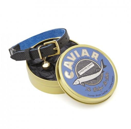 Cheshire and Wain The Beluga Caviar Luxury Leather Cat Collar