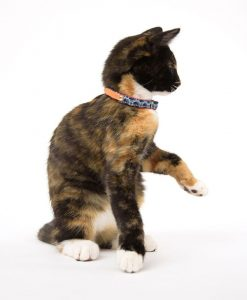 Shweshswe Navy Circles Cat Collar by Hiro and Wolf at Chelsea Cats