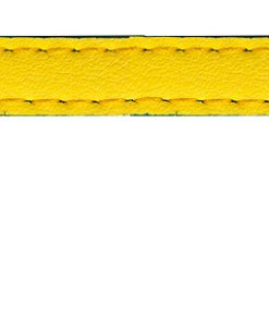Sotnos Bright Yellow & Blue Cat Collar