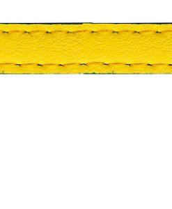 Sotnos Bright Yellow & Blue Cat Collar