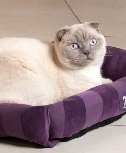 Plum AristoCat Lounger Cat Bed