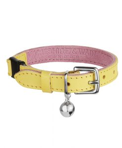 Luxury Lemon Sorbet Cat Collar