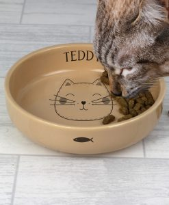 Personalised Cute Cat Small Ceramic Brown Pet Bowl
