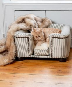 Luxury Tetford Concept Cat Chesterfield Sofa Bed