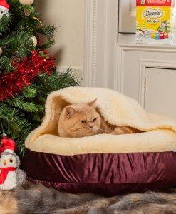Luxury Snuggle Velvet Hooded Cat Cushion Bed in Grape
