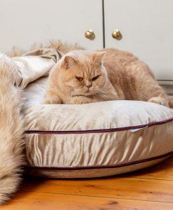 Luxury Mushroom Velvet Cat Cushion Bed