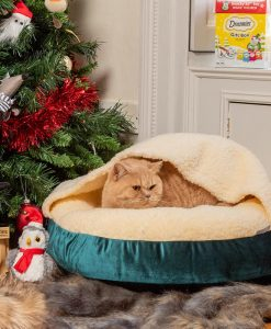 Luxury Snuggle Velvet Hooded Cat Cushion Bed in Teal
