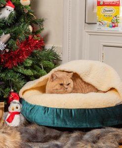 Luxury Snuggle Velvet Hooded Cat Cushion Bed in Teal