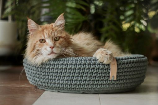 Coco Cat Bed Green by Labbvenn