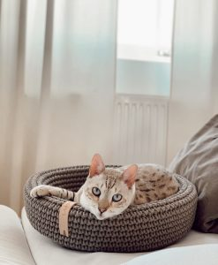 Coco Cat Bed Light Brown by Labbvenn