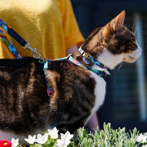 Wizard of Dog Vegan Cat Harness