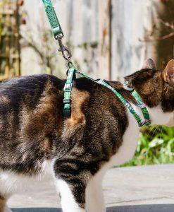 Combs Vegan Cat Harness