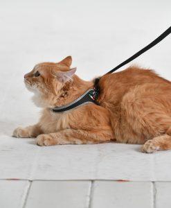 Tre Ponti Easy Fit Liberta Black Cat Harness with No Escape Adjustable Closure