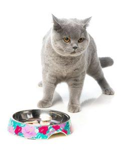 FuzzYard Lahaina Cat Feeding Bowl